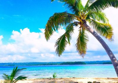 dany-island